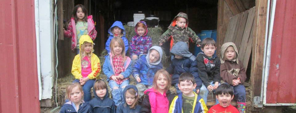 Preschool visit to a farm